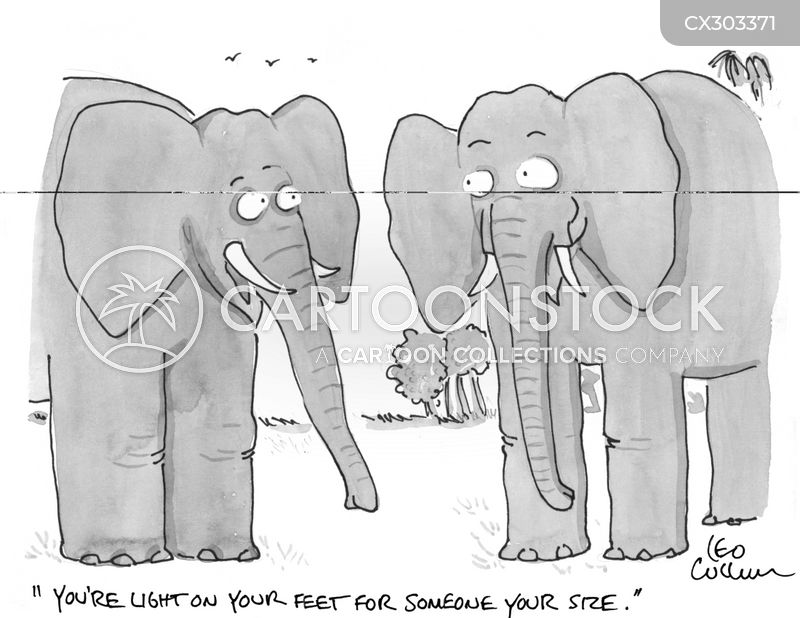 big elephants cartoon
