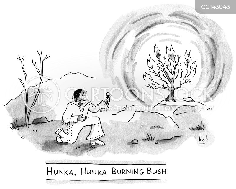 burning bush cartoon