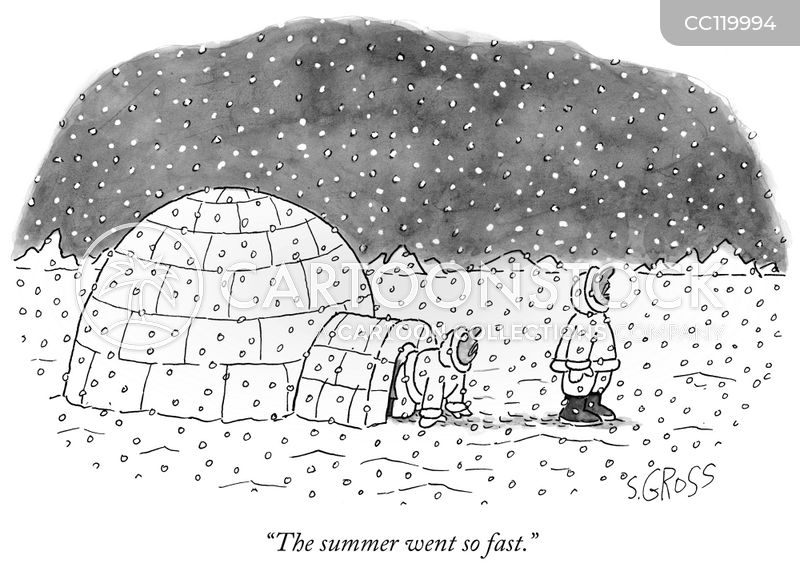 summers cartoon