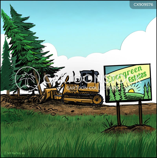 advertised cartoon
