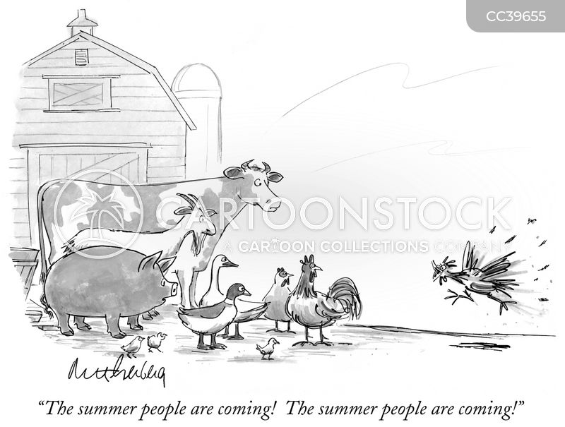 summer home cartoon