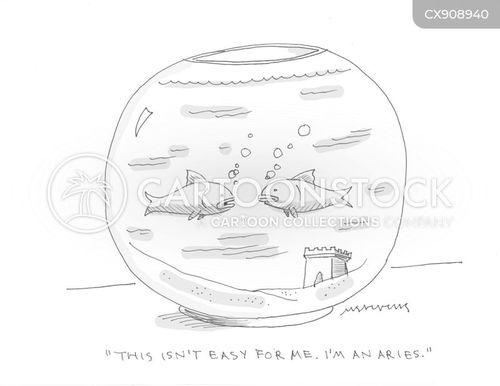 births cartoon