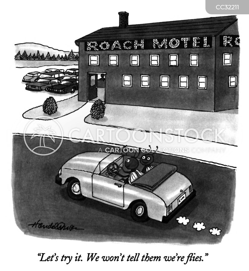 road trips cartoon