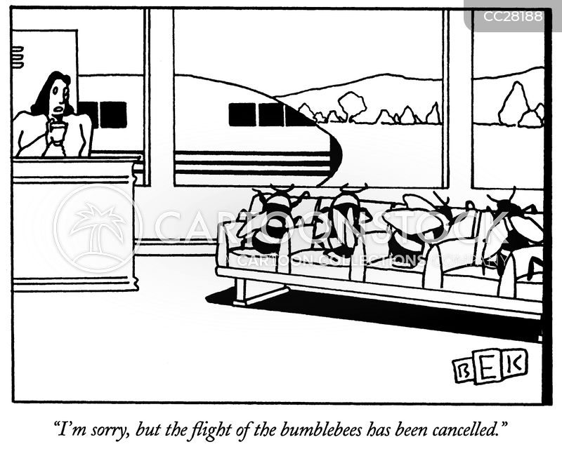 frequent flyers cartoon