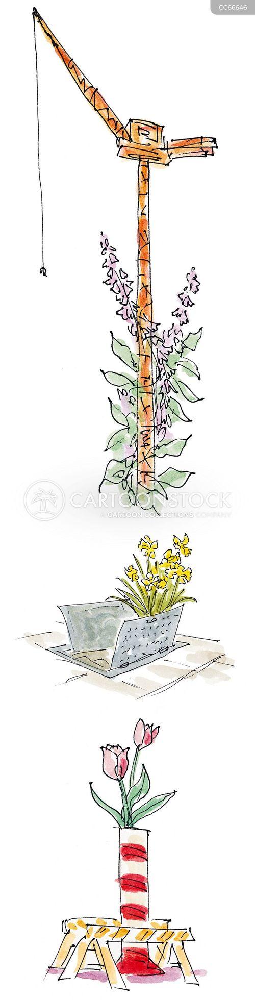 bloom cartoon