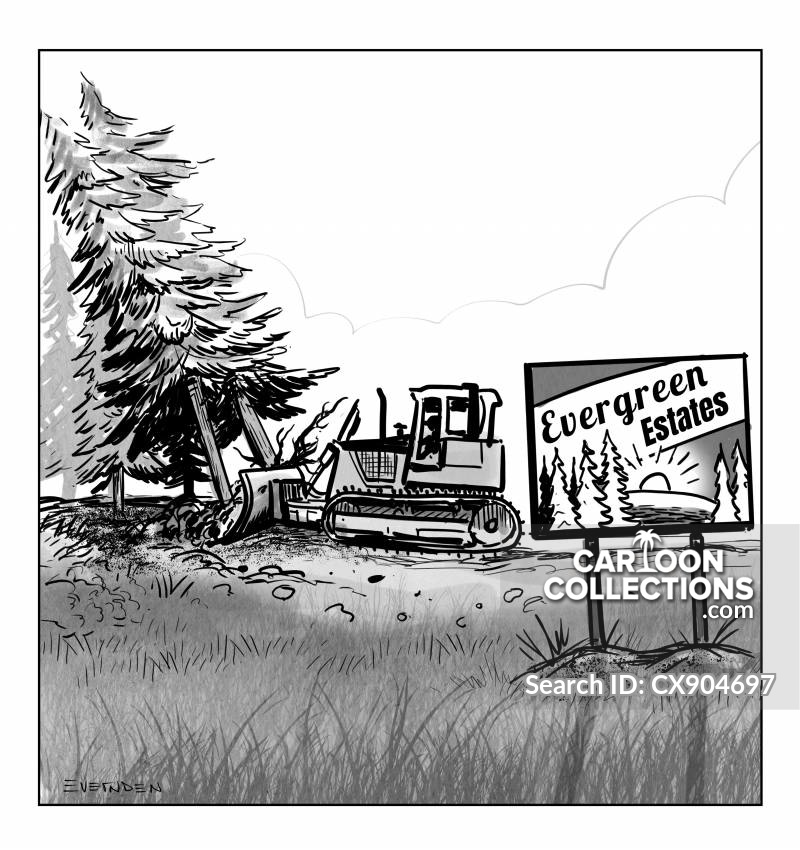 real estate development cartoon