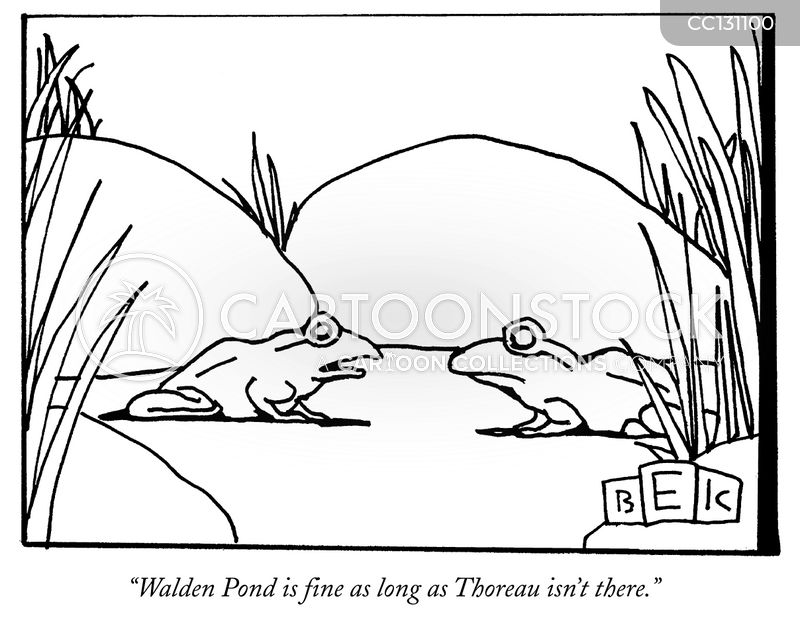 walden pond cartoon
