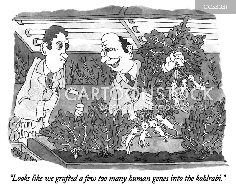 genetically modified organisms cartoon