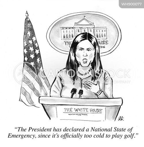 press secretary cartoon
