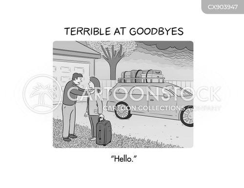 emotional baggage cartoon