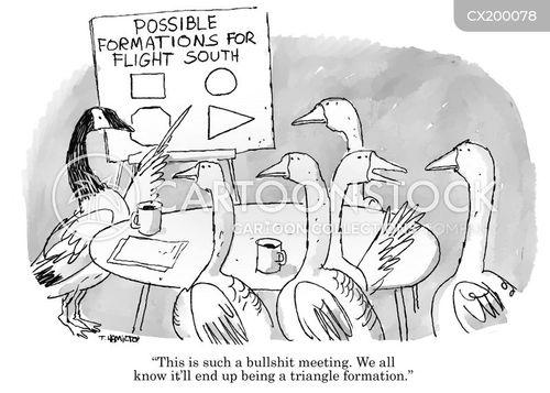 flight formation cartoon