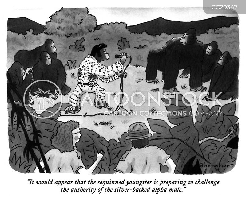 gorillas cartoon