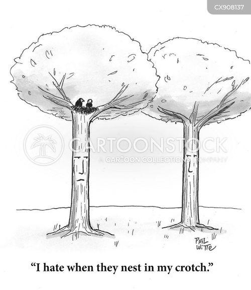hated cartoon