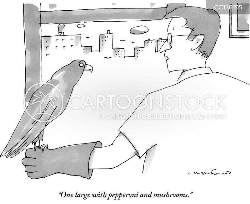 hawk cartoon