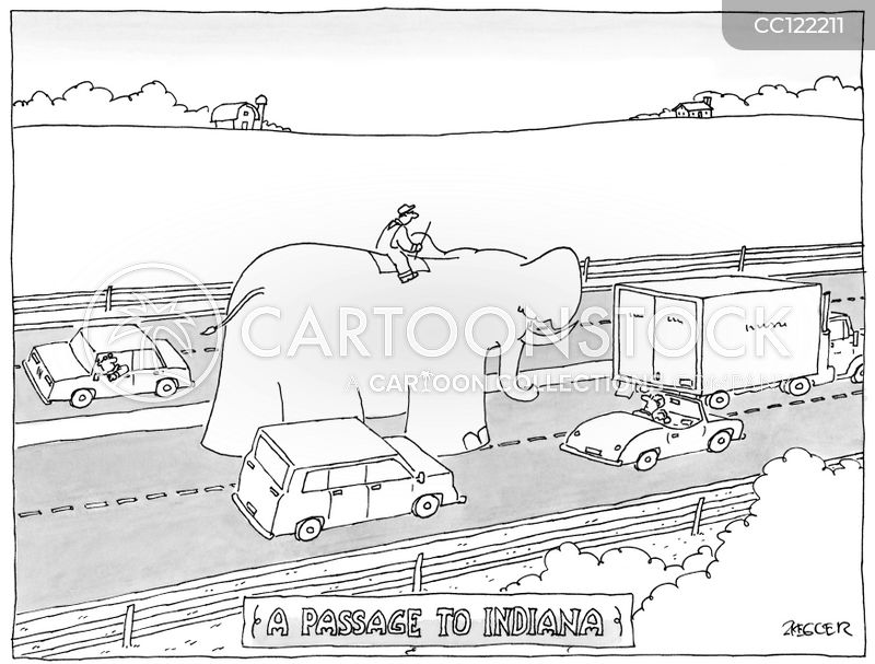 riding an elephant cartoon