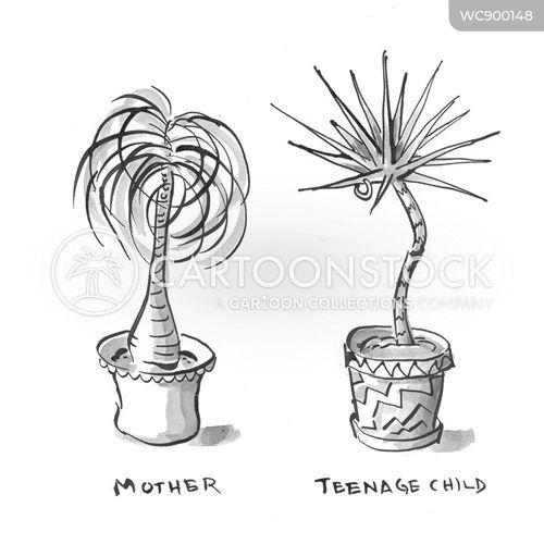 house plants cartoon