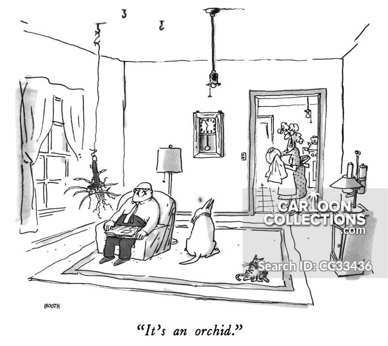 houseplant cartoon
