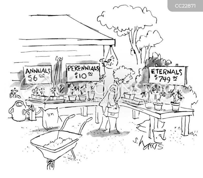 garden centre cartoon