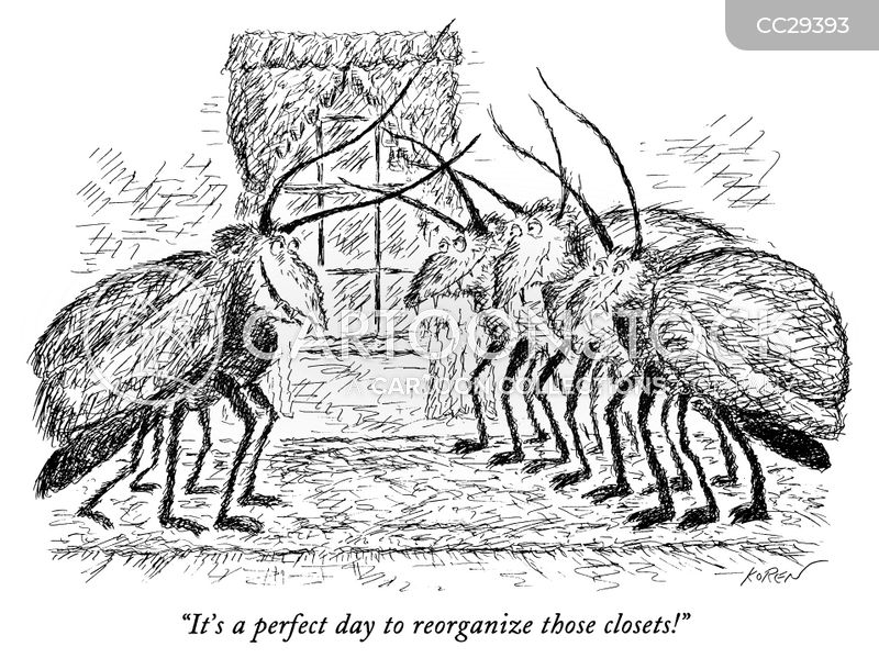 insects cartoon