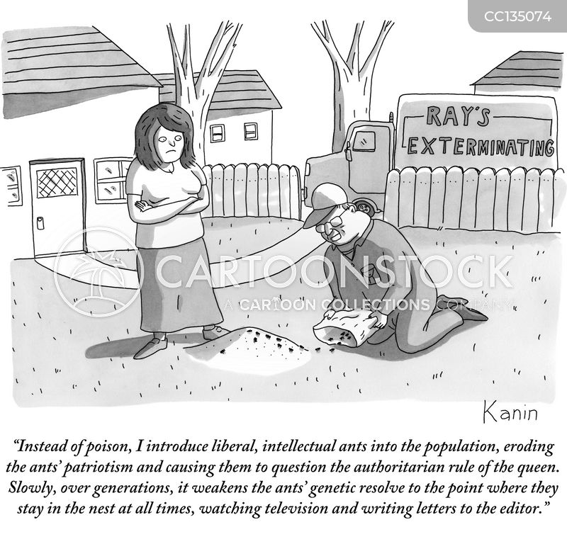 Ant Colonies cartoon