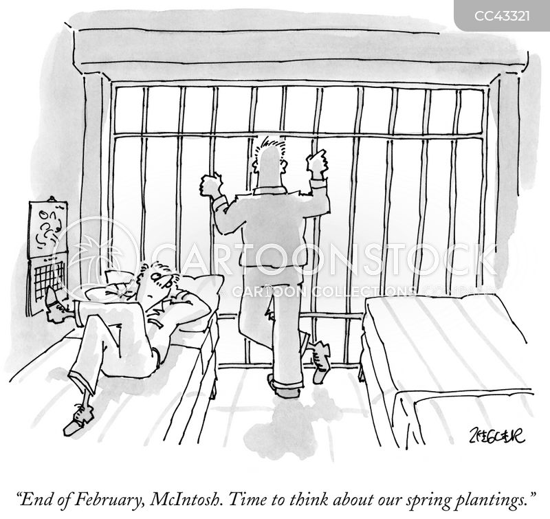 Imprisonment cartoon