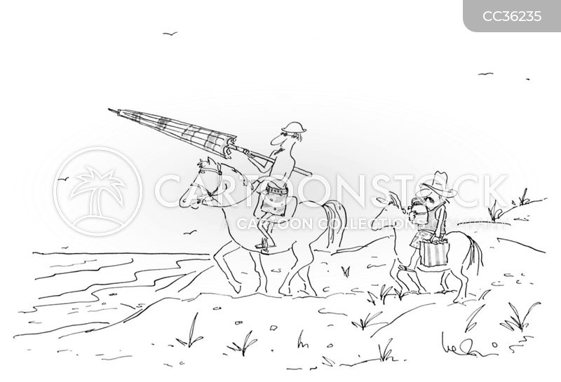 Jousters cartoon