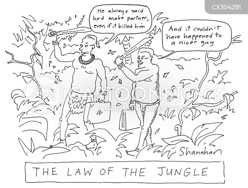 law of the jungle cartoon