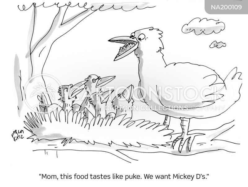 chick cartoon