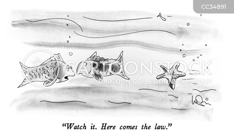 school of fish cartoon