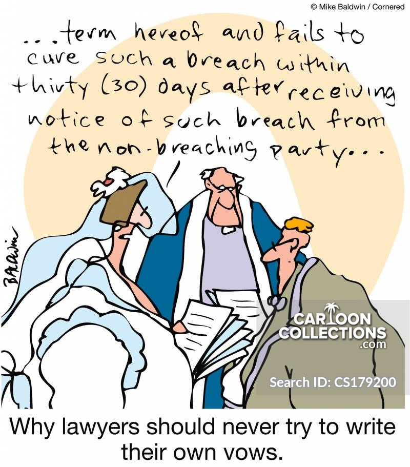 Writing Your Own Vows cartoon