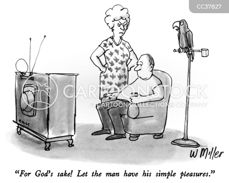 domestic chores cartoon