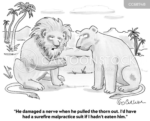 animal kingdom cartoon