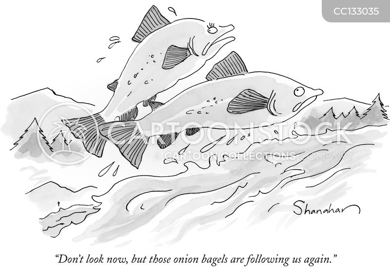 salmon cartoon