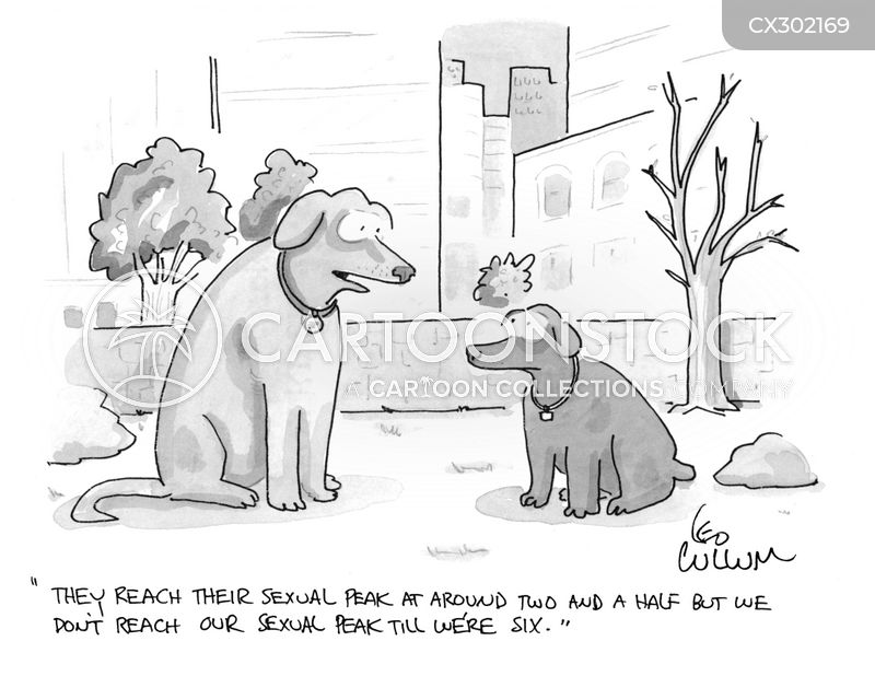 breed cartoon
