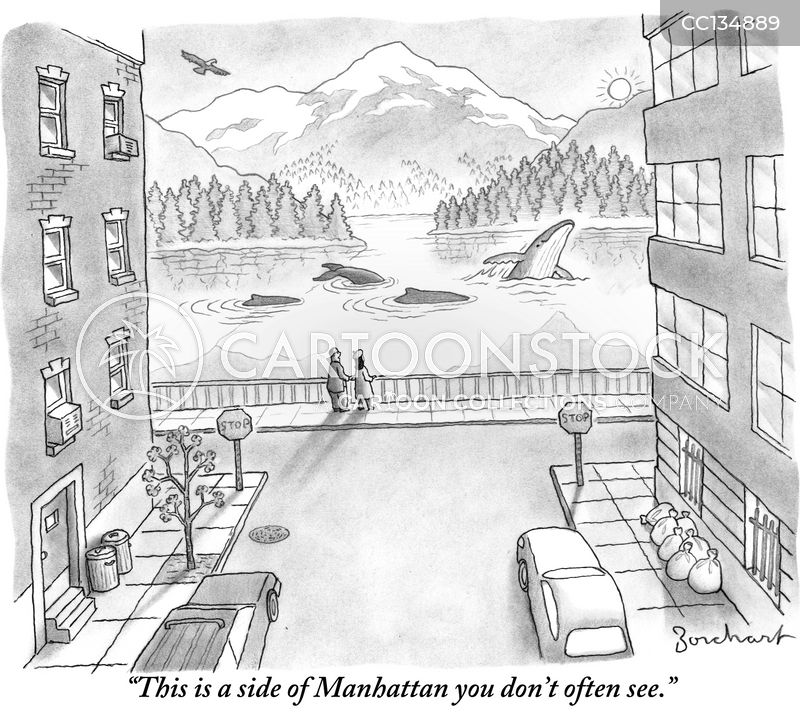 mountain view cartoon
