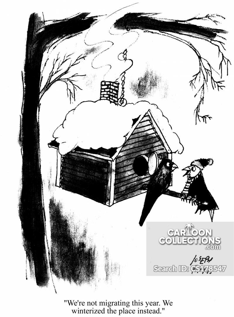 winterize cartoon