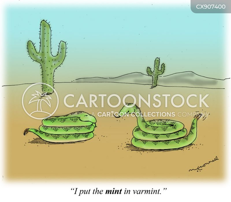 varmint cartoon