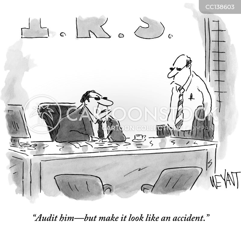audit cartoon