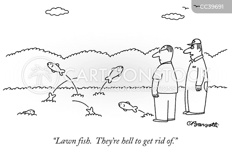 pond cartoon