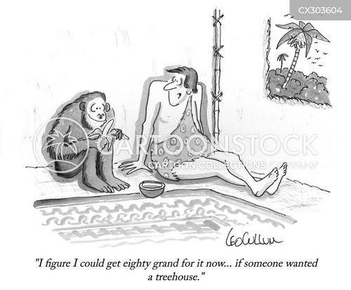property markets cartoon