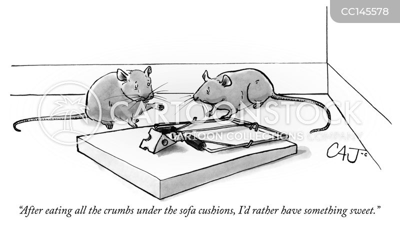mice cartoon