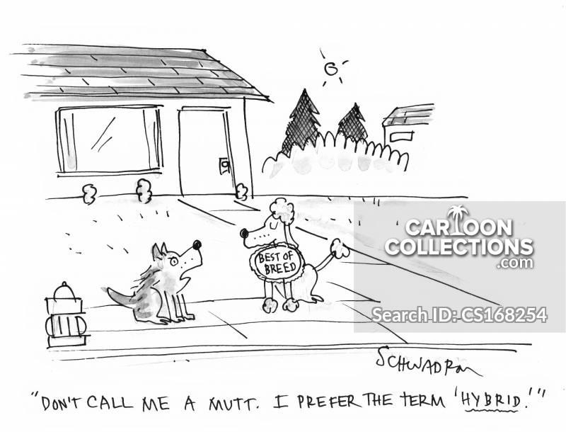 offensive language cartoon