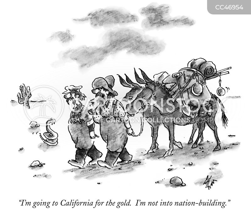 49er cartoon