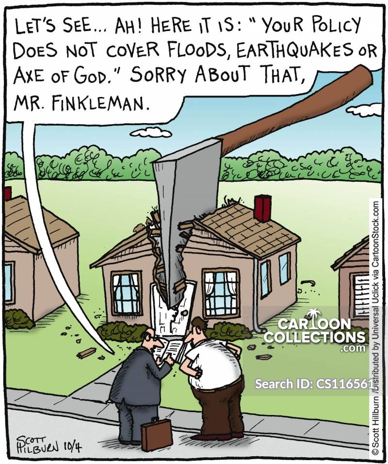 insurance clauses cartoon