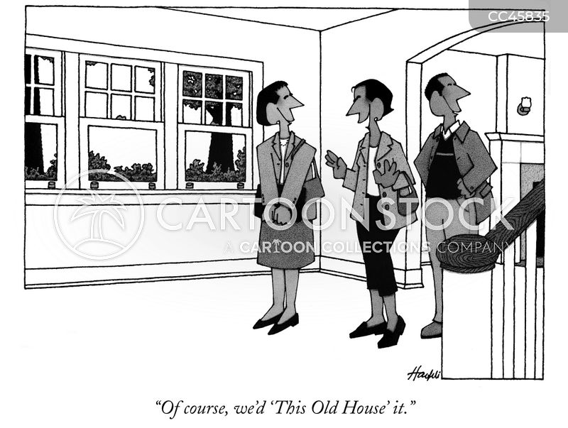 second homes cartoon