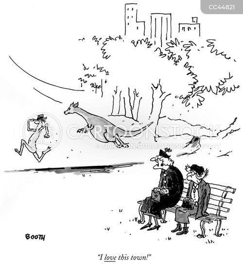 kangaroos cartoon