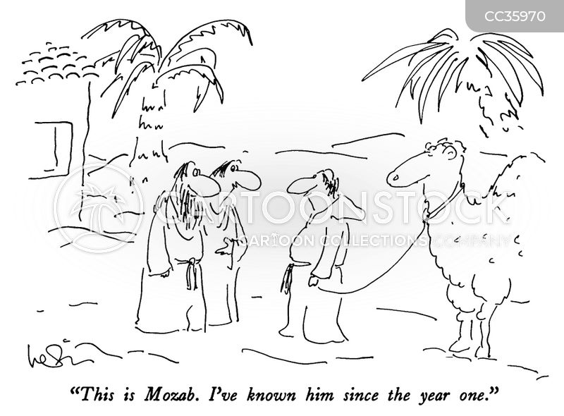 biblical times cartoon