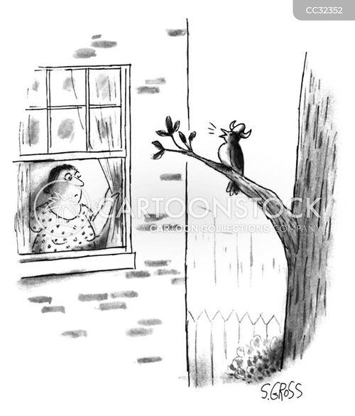opera cartoon