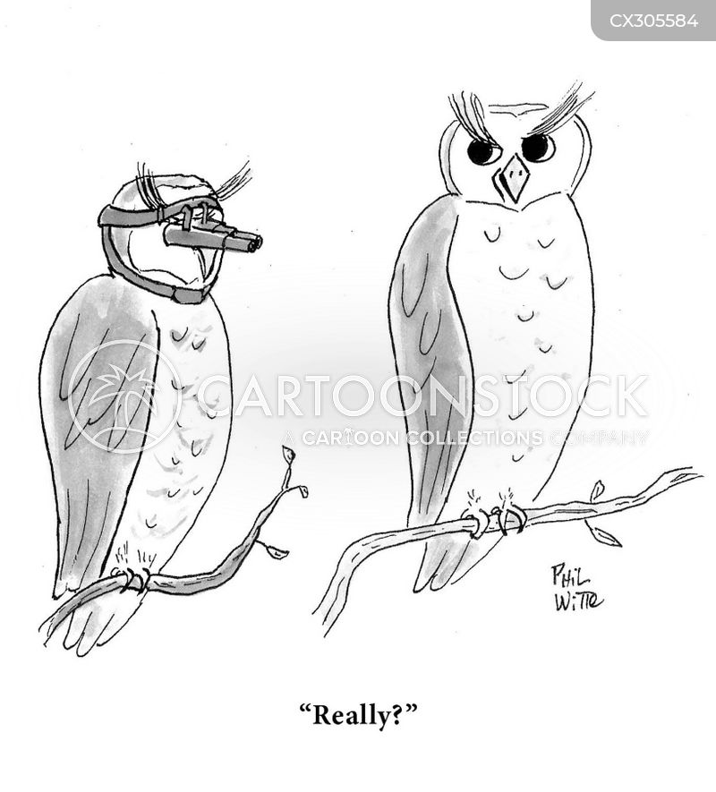 Birds Of Prey cartoons, Birds Of Prey cartoon, funny, Birds Of Prey picture, Birds Of Prey pictures, Birds Of Prey image, Birds Of Prey images, Birds Of Prey illustration, Birds Of Prey illustrations