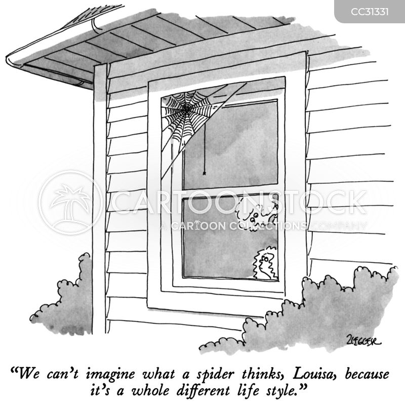arachnids cartoon